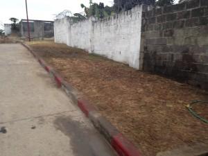 Kinshasa 2014 2440